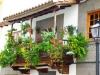 kanarischer-balkon