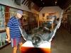 26 Naturkunde im  Museum in Santa Cruz